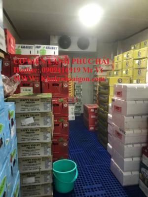 Lắp đặt Kho lạnh trái cây PSon Mart