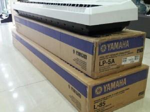 Yamaha P 115 hàng trưng bày