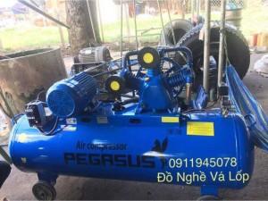 Máy nén khí Piston chính hãng Pegasus