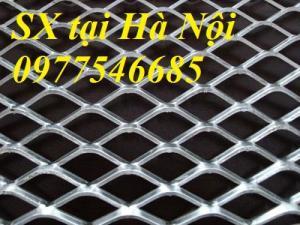 Lưới hình thoi ô lưới 20*40 dây 2 ly hàng có sẵn