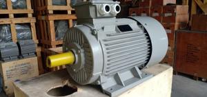 Động cơ motor điện, motor điện giá sỉ, phân phối motor toàn quốc