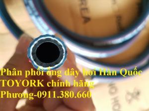 Phân phối ống dây hơi Hàn Quốc TOYORK chính hãng (PHI 19)