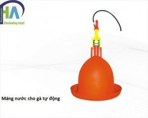 Các lợi ích khi sử dụng máng uống nước tự động cho gà Phú Hòa An