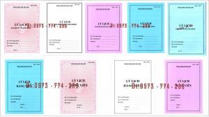 Bán các loại mẫu sổ lý lịch của người xin vào Đảng - Lý lịch Đảng viên