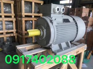Động cơ motor điện 3 pha 50HP - 2P