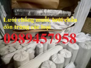 Lưới chống mối, lưới chắn côn trùng inox 304, inox 201, inox 316