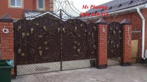 Gia công, lắp đặt mẫu cổng sắt hoa văn tinh tế, trang nhã cho nhà ở hiện đại
