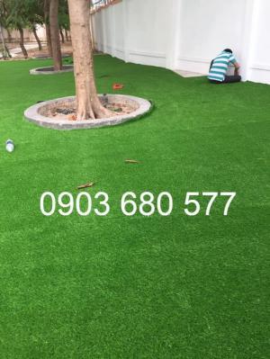 Chuyên cung cấp cỏ nhân tạo trang trí trường mầm non