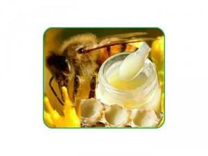 Sữa ong chúa Tâm Phong