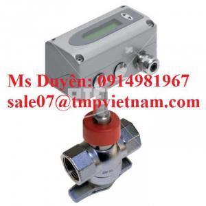 Thermal dispersion flow meters EE772 Riels Việt nam