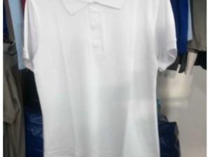 Sỉ áo thun polo trắng tinh tại xưởng