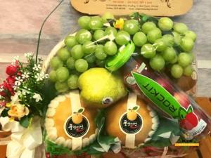 Giỏ trái cây đi tiệc - FSNK109