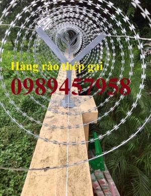 Cung cấp dây thép gai hình dao tại Hà Nội