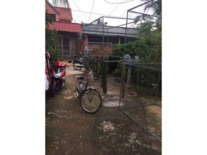 2019-11-14 15:08:40  3  1,4công nhà vườn ấp Cây Xanh,Thạnh Phú,Châu Thành,Tiền Giang 1,350,000,000