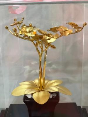 Chậu lan mạ vàng 24k quà tặng tết 2020