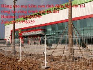 Hàng rào mạ kẽm sơn tĩnh điện D4  , D5, D6 ( 50*100, 50*150,50*200, 100*150,100*200) , hàng rào bẻ tam giác , hàng giào