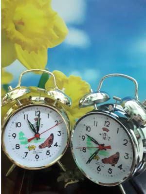 Đồng hồ gà mổ thóc ko chạy pin