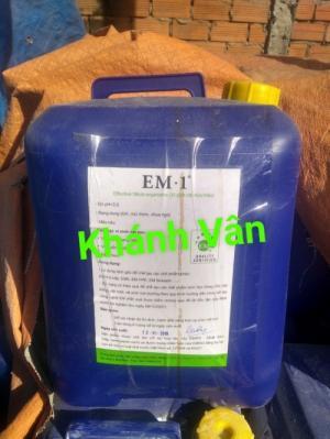 Cách ủ EM gốc thành EM thứ cấp, EM tỏi, EM5