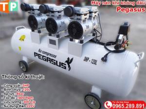 Máy nén khí không dầu Pegasus 3HP - 120L