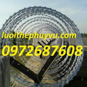 Cung cấp dây kẽm gai hình dao, kẽm lam làm hàng rào bảo vệ giá rẻ nhất