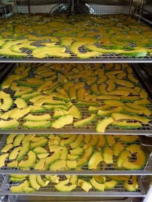Máy sấy trái cây, sấy khô hoa quả, thực phẩm Điện Máy Xuân Phú