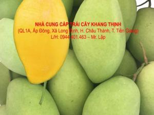 Xoài cát Hòa lộc chính hiệu - Tiền Giang