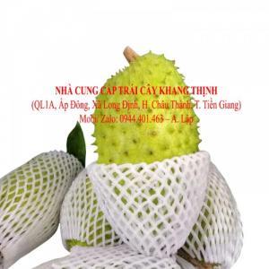 Mãng cầu xiêm xuất khẩu - xuất xứ Tiền Giang