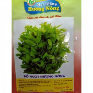 Hạt giống rau bồ ngót Hương Nông
