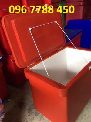 Bán Thùng giữ lạnh 800 lít, thùng lạnh quán ăn, nhà hàng