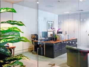 Ưu điểm vượt trội của vách kính văn phòng