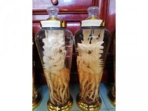 Mình cần bán sản phẩm về rượu ngâm Đinh Lăng hoặc Sâm Hàn Quốc
