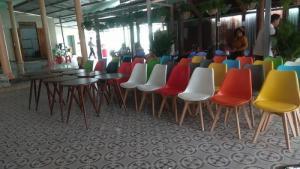 Ghế nhựa chân gỗ giá rẻ tại xưởng