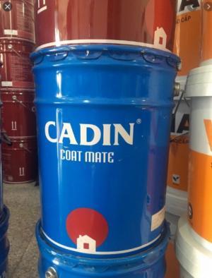 Đại lý cấp 1 chuyên cung cấp sơn Epoxy Cadin giá tốt