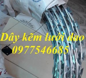 Chuyên sản xuất dây thép gai mạ kẽm, dây thép gai hình dao chống trộm