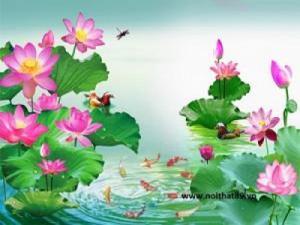tranh thủy mặc hoa sen 3d