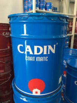 Nhà sản sơn kính Cadin pha màu theo yêu cầu