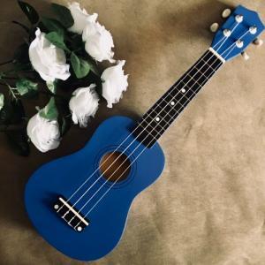 Đàn Ukulele màu xanh dương đậm | Size soprano 21' chính hãng.