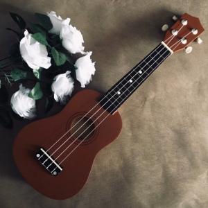 Đàn Ukulele gỗ nâu coffee | Size soprano 21' chính hãng.