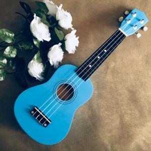 Đàn Ukulele gỗ xanh ngọc | Size soprano 21' chính hãng.