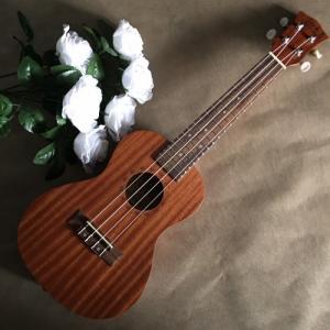 Đàn Ukulele gỗ nguyên tấm | UK Size concert 23' chính hãng.