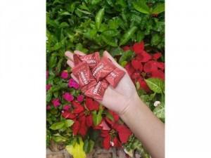 6 viên kẹo sâm hamer
