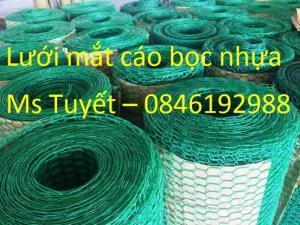 Lưới mắt cáo bọc nhựa có sẵn tại Hà Nội