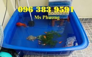 Thùng nhựa chữ nhật dùng nuôi cá, trồng rau