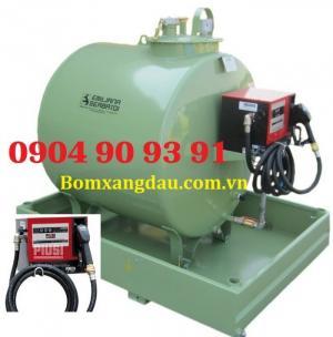 Bơm dầu Piusi Cube 56/33-230V, hộp bơm dầu cấp phát Cube 56/33, Piusi Cube 56/33 00057500C