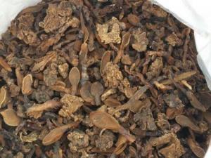Nấm ngọc cẩu tăng cường sinh lý cực mạnh