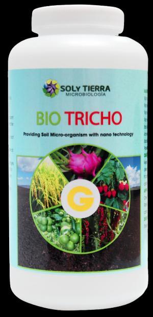BIO TRICHO - Phòng trừ nấm tấn công gây thối bộ rễ, giúp rễ phát triển khỏe, kích thích mầm, chồi sớm mọc ra khi bị gãy đổ