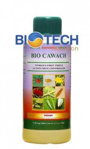 BIO CAWACH - Kiểm soát và trị kiến lửa gây hại cây trồng