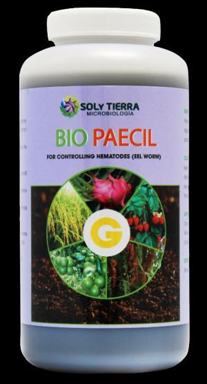 BIO PAECIL - Phòng trừ tuyến trùng hại rễ, nấm bệnh trên rễ.
