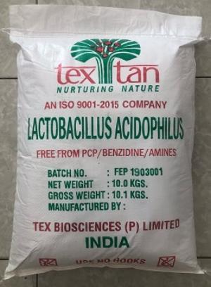 Men Đường Ruột đơn dòng Lactobacillus Acidophilus hỗ trợ đường ruột tiêu hóa