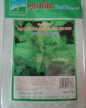 Hạt giống bạc hà âu (húng lũi) Phú Nông